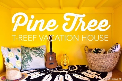 T-REEF Vacation House pine tree